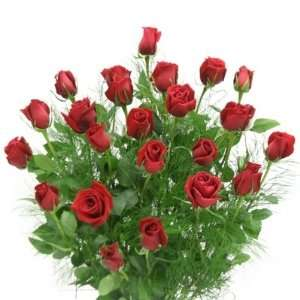Dozen Red Roses Bouquet:  Grocery & Gourmet Food