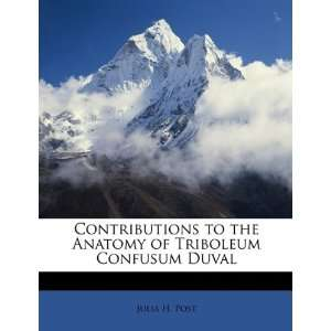 of Triboleum Confusum Duval (9781146620178): Julia H. Post: Books