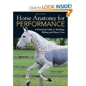 Performance (9781446300961): Gillian Higgins, Stephanie Martin: Books