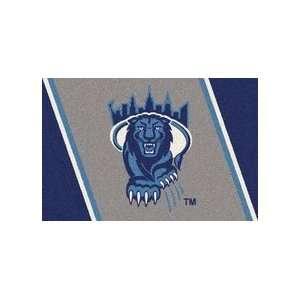 Columbia Lions 4 x 6 Team Door Mat: Sports & Outdoors