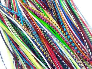 LONG THIN 100% REAL FEATHER HAIR EXTENSIONS GRIZZLY BRIGHT COLORS USA