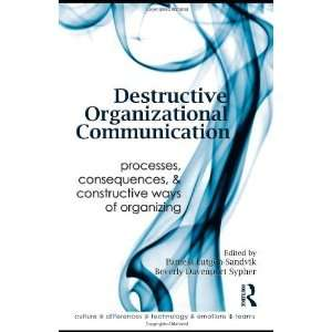 Communication Processes, Consequences, and Constructive
