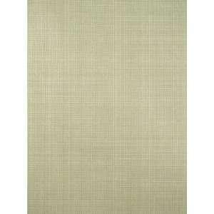 Scalamandre Picnic Texture   Lettuce Wallpaper: Home