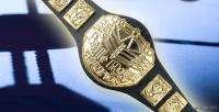WWE Wrestling BATTLE ROYAL Toy Action Figure BELT