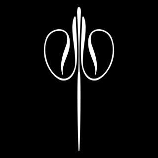 VINYL PINSTRIPE PINSTRIPING DECAL STICKER GRAPHIC 30bc