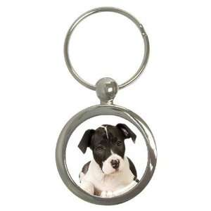 American Staffordshire Puppy Dog Round Key Chain AA0015