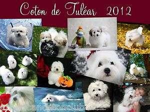 2012 COTON DE TULEAR CALENDAR   FIRST EDITION OF COTON PUPPIES & DOGS
