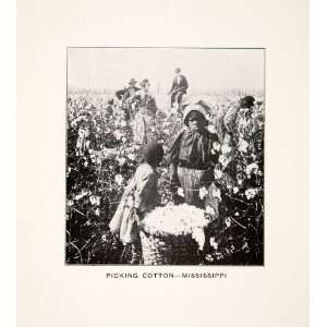 Black Americana   Original Halftone Print