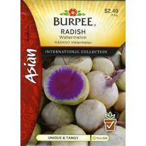 Burpee 69646 Asian   Radish Watermelon Seed Packet: Patio