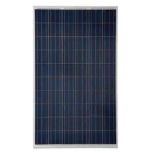 Trina Solar TSM 240PA05 Solar Panel 240 Watts: Patio, Lawn