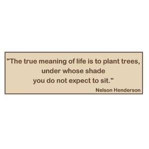 The true meaning of life is to plant trees, under whose shade you do