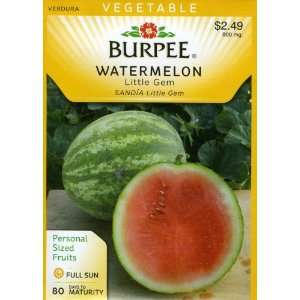 Burpee 67621 Watermelon Little Gem Seed Packet Patio