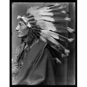 Horse,American Indian,headdress,Wild West Show