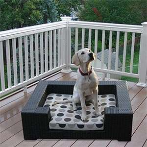 Big Rover Outdoor Dog Furniture by Sirio (For Larger Dogs) All Weather